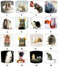 Lampshades Ideal To Match Pet Rats Wall Decals & Stickers Pet Rats Cushion Duvet