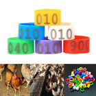 Plastic Ducks Rings Chicken Clips Bands 8*7mm Clip On Leg Poultry Large Pigeon