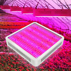 800WFull Spectrum LED Grow Light 800LEDs For Hydroponics Plant  Growing Lighting