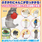 Putitto Series Exotic Shorthair Cats Mini Figure Collection