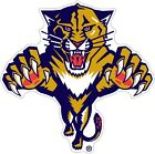 Florida Panthers NHL Color Die Cut Vinyl Decal Sticker - You Choose Size $10.99 USD on eBay