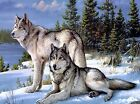 5D DIY Diamond Painting Wolf, Full Cover, Square Tile #01