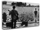 Oasis Live at Knebworth Park Framed Canvas Wall Art