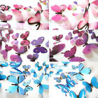 Majestic Home Decor  Home Decorations 12pcs Decal Wall Stickers 3D Butterfly Rainbow Purple Color Diy Projects Home Decor