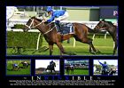 WINX 'INWINXIBLE' LAST RACE 2019 HORSE RACING SIGNED PHOTO COLLAGE FRAMED