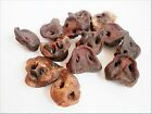 Dried PORK PIG SNOUTS - treats chews 100% NATURAL Hypoallergenic low fat snacks
