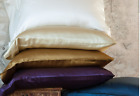 100% Pure Mulberry Silk Pillowcase 19MM 2pc Hypoallergic No Frizz Hair Antiaging image