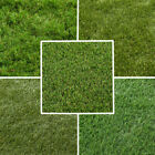 CLEARANCE - High Quality Realistic Artificial Grass -  Fake Lawn -Free Delivery