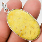 Indonesian Fossil Coral 925 Sterling Silver Pendant Jewelry SDP26138