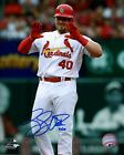 Luke Voit St Louis Cardinals MLB Autographed Photo: 2 Sizes Available on Ebay