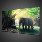 ELEPHANT IN RAINFOREST WATERFALL ANIMAL CANVAS PRINT WALL ART PICTURE PHOTO