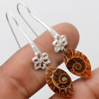 Fossil Ammonite - Madagascar 925 Sterling Silver Earrings Jewelry SDE23337