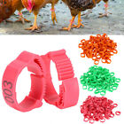 100pcs 2-2.4cm Chicken Poultry Foot Ring Hen Leg Clip Band Duck Bird Ring Parrot