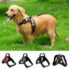 Pet Dog Puppy Harness Vest Collar Adjustable Soft Collar Walk Outdoor Hand Strap