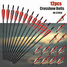 20'' Crossbow Bolts Screw in Tips Carbon Arrows or Broadheads Archery 12/24pk US