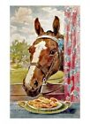 Horse Finds Cookies Window Sill Quilt Block Multi Sizes