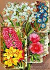 Colorful Floral Seed Packet Quilt Block Multi Size (7A