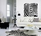 Giant Zebra Wall Art Decal, Sticker, Mural Different Sizes / Colours Avail (Z3)
