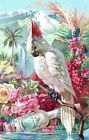 Tropical Cockatoo Roses Florals Multi Sizes Quilt Block FrEE ShiPPinG WoRld WiDE