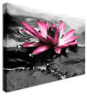 Water Lilly P Flower Canvas Wall Art Print Large + Any Size