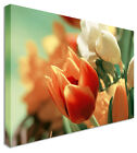 Large The Last Tulip Flowers Wall Art Print Large Any Size