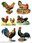 Vintage chicken / rooster 6 iron on transfers or stickers- fabric wood decoupage