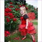 Childrens / Toddlers Girls Ladybird Dressing up Fairy Ages 18-24m / Age 2-3 Y