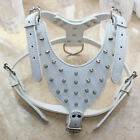 White Leather Spiked Studs Dog Harness Medium Large Dog Pitbull Mastiff Terrier