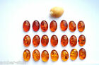 Cognac Baltic amber oval cabochon  12mm x 8mm hand cut natural best quality.