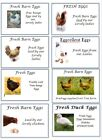 8 Egg Box Labels Personalised Chicken Duck Hen Cartons Boxes Free Range Label