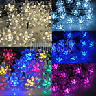 20LED Solar Powered Flower Fairy String Lights Garden Christmas Outdoor Lighting