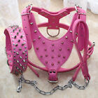 LARGE Spiked Leather Dog Harness Studded Collar Leash Lead SET Pitbull 26-34""