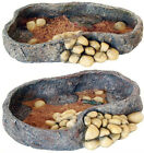 Reptile Food Water Bowl Dish with Rock Decoration Vivarium Feeders in 2 Sizes