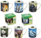 Photographic Mugs - ANIMAL PLANET PICTURE MUG - Choose Your Design