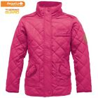 Regatta womens Giddy Up  Equestrian Style Quilted Padded Jacket