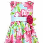 Rare Editions Rose Floral Toddler Girls Dress NWT $55 2T