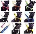Large XL Adjustable Strong Non Pull Dogs Harness Or Set By FriendlyDogCollars