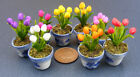 1:12 Scale Handmade Dolls House Miniature Tulip Flowers In Ceramic Pot Accessory