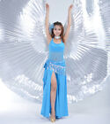 New Professional Egypt Belly Dance Costume Isis Wings 360° Isis Wings 11 colours
