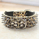 Gold Leopard Leather Spiked Studded Dog Collar Pitbull Bully Terrier Pet Collar