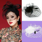 Handmade Fascinator Mesh Net Hat Lady Girl Wedding Church Veil Feather Hair Clip