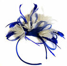 Customised Feather Hair Fascinator on Headband Wedding Royal Ascot Races Bespoke <br/> Send a message if the you don&#039;t see the colour you want