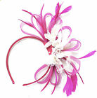 Customised Feather Hair Fascinator on Headband Wedding Royal Ascot Races Bespoke <br/> Send a message if the you don't see the colour you want