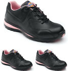 LADIES DICKIES STEEL TOE CAP SAFETY WOMENS TRAINER WORK LACE NON LEATHER SHOES