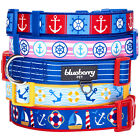 "Blueberry Pet ""Bon Voyage"" Collection Desinger Dog Collar with Nautical Anchors"