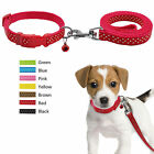 Didog Dots Print Nylon Cat Puppy Dog Collar&Leash Set for Chihuahua Poodle S M L