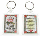 "NOVELTY NAME KEYRING PRINTED BOTH SIDES WITH ORIGIN & MEANING, LETTER ""S"" UK NEW"