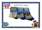 Socks,Original/Official Paw Patrol  Boys Socks,Pack of 3,&3 Size Available