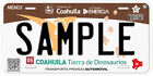 Personalized Customized Any States of Mexico Novelty Car Auto License Plate