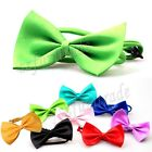 Colorful Adjustable Pet Puppy Kitten Dog Cat Bow Tie Necktie Collar Neck Tie BJ